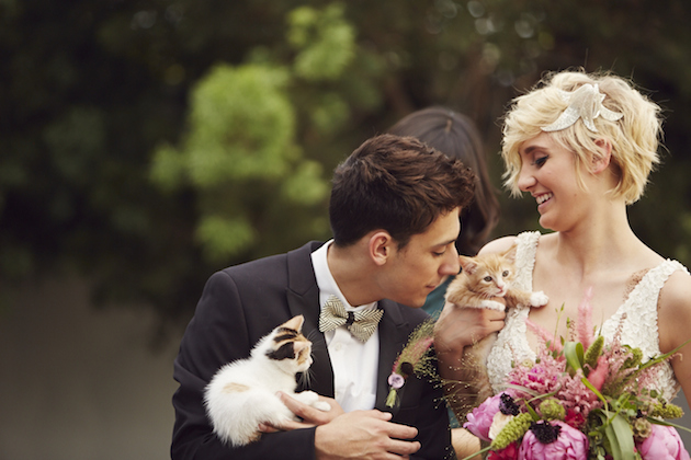 Bride and groom with cats