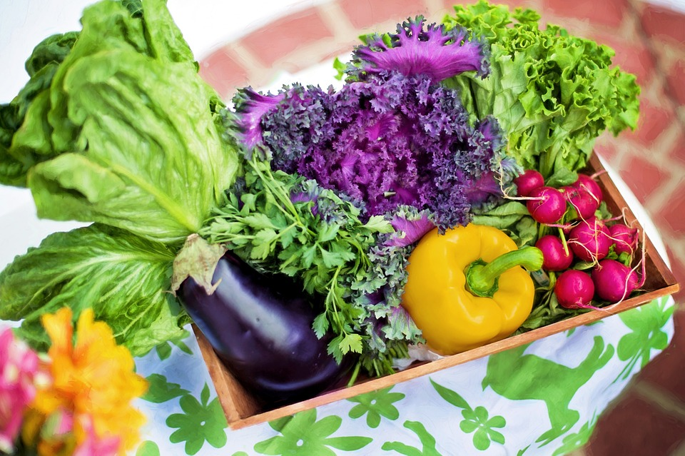 Basket of fresh and colorful vegetables