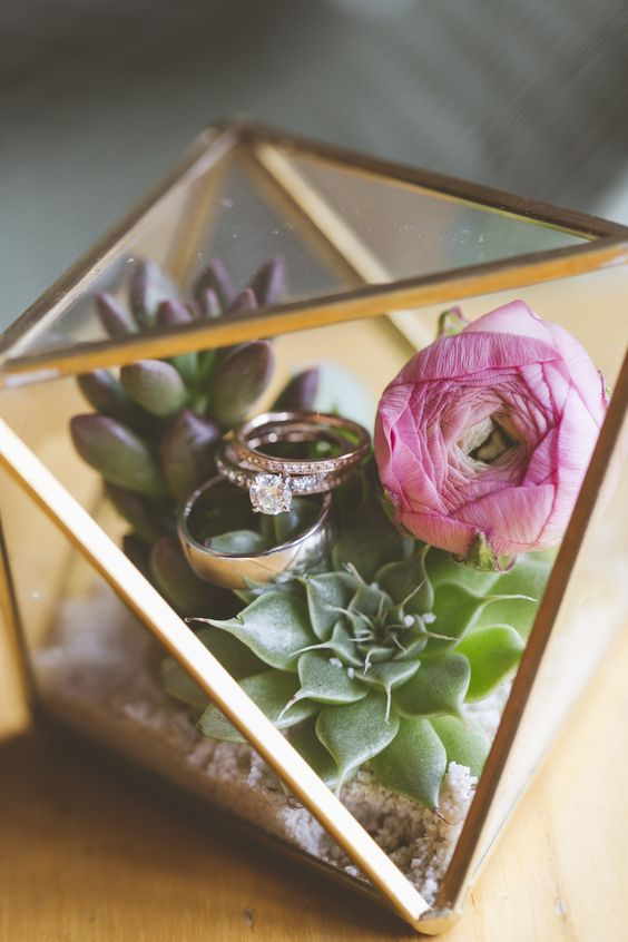 Flowers in a terrarium