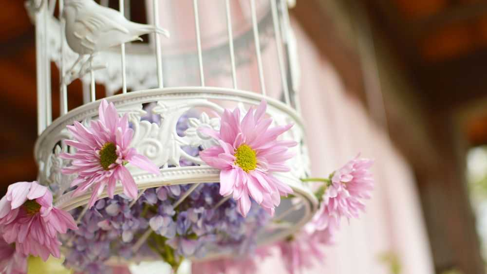 with birdcage with flowers