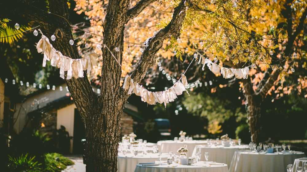 decorated trees and dining tables