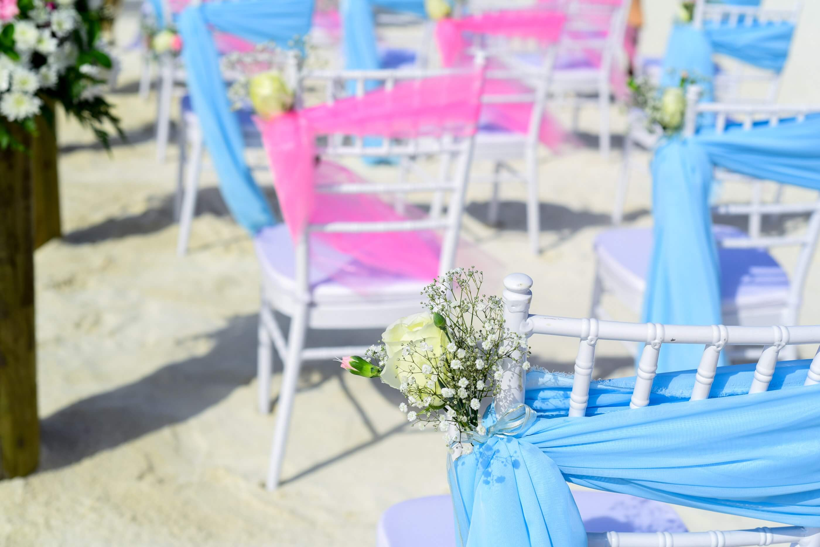 chairs with floral decorations